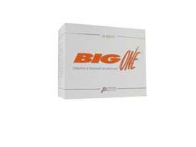 big one integratore alimentare di l-aminoacidi (essenziali + l-cistina e l-tirosina) in bustine
